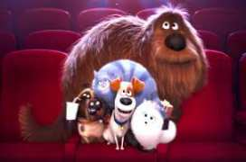 The Secret Life Of Pets 2016 Spanish Download Free Movie Torrent Clarivox